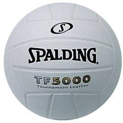 Spalding Game Ball